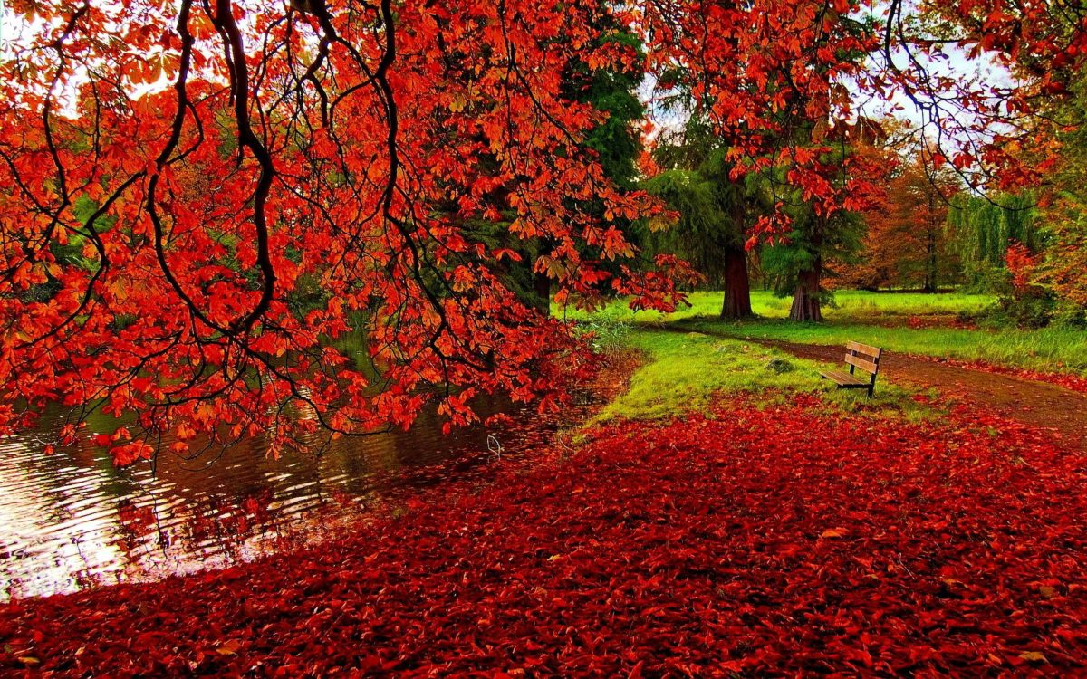 Autumn Wallpapers – Full HD wallpaper search