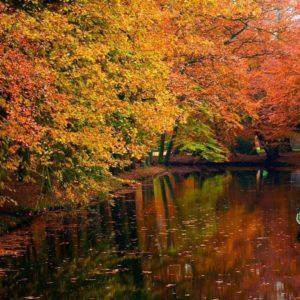 download Download River And Fall Wallpaper   Desktop HQ Wallpapers (3742 …