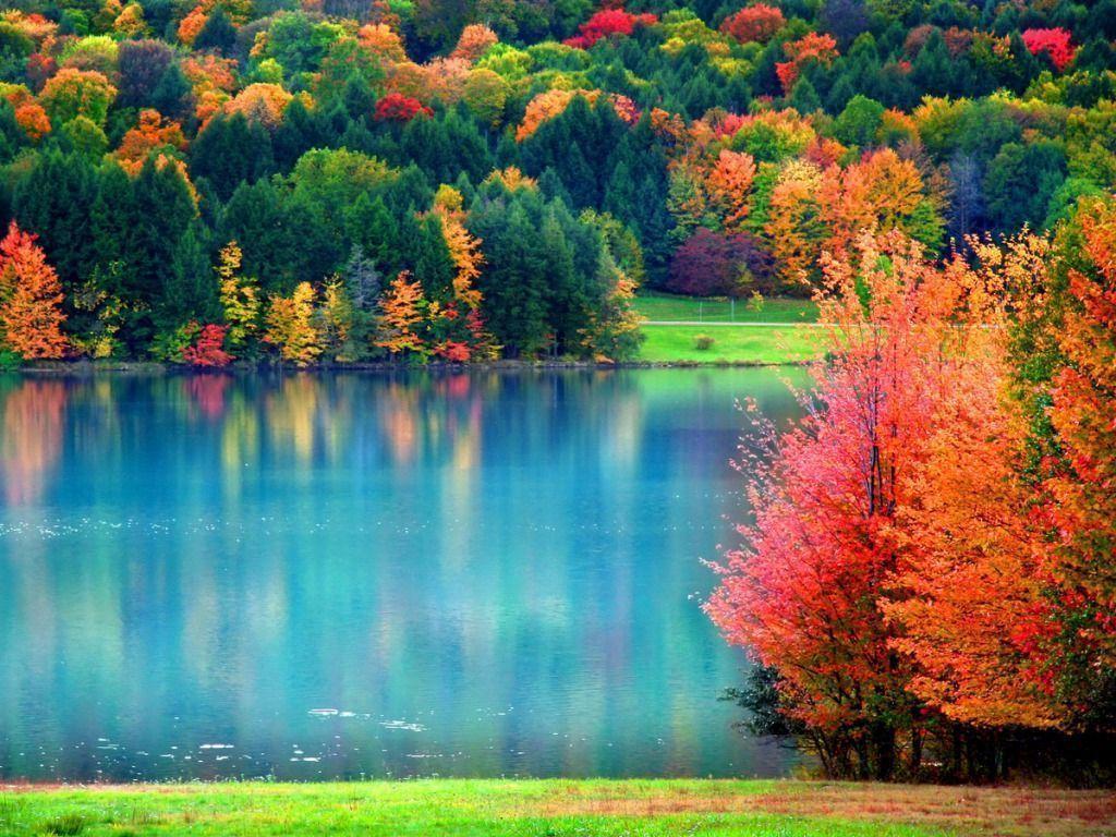Fall Desktop Wallpaper 15902 2048×1361 px
