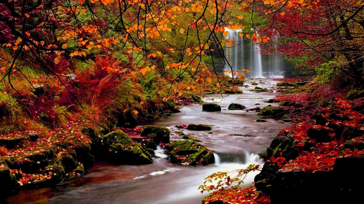 Fall HD Wallpapers 1080p · Fall Wallpaper HD | Best Desktop …