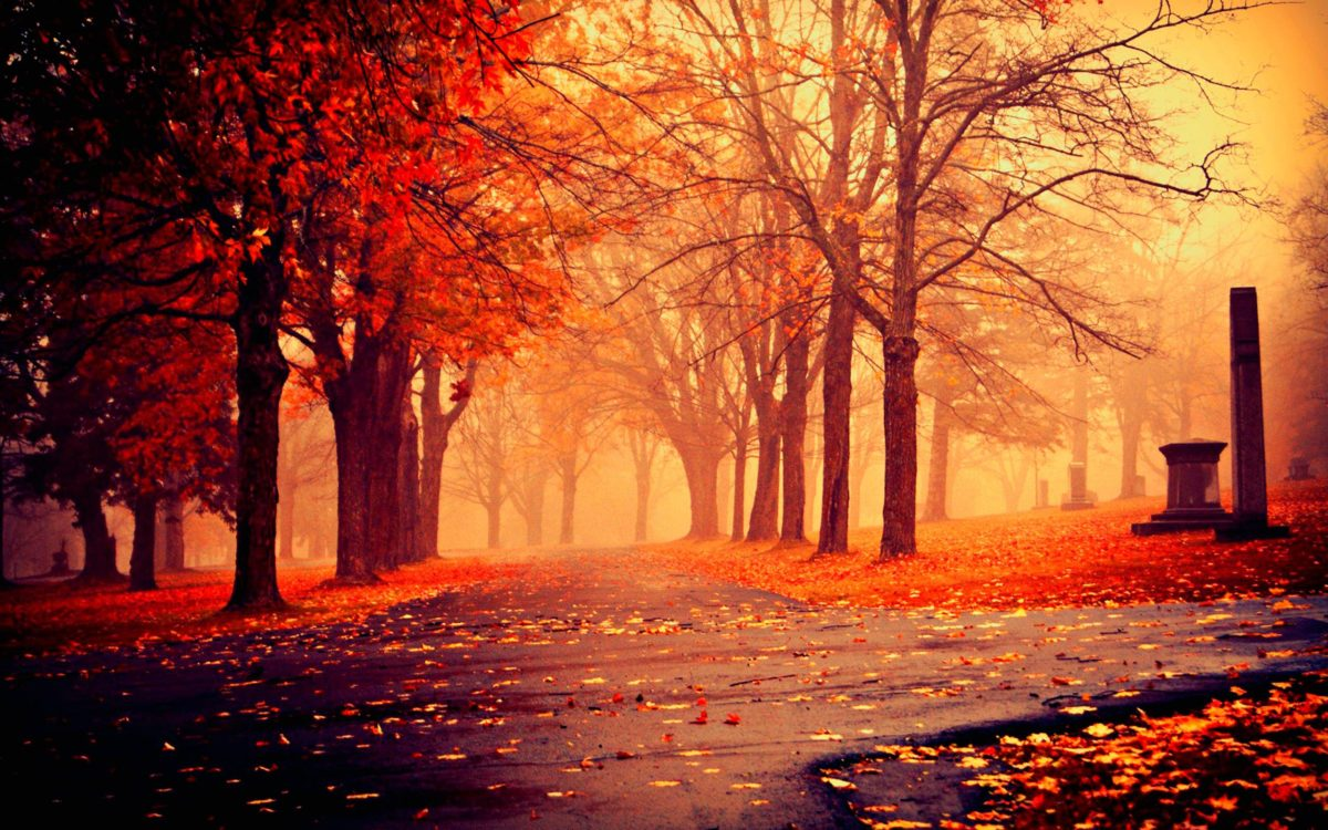 HD Wallpapers Nature Fall | High Definition Wallpapers