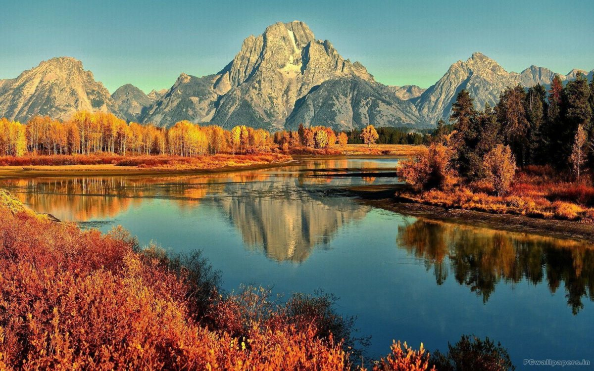 Fall Wallpapers – Viewing Gallery