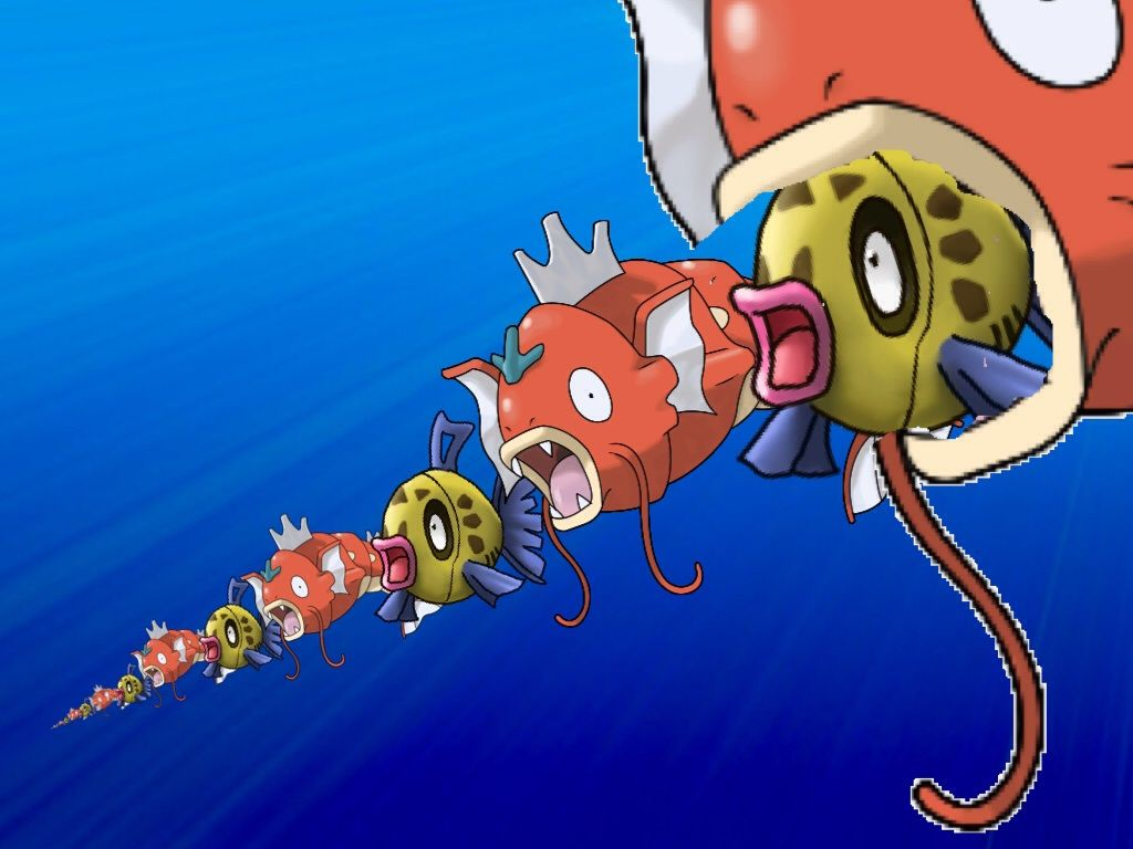 Magikarp-feebas chain insanity -response to 9 month old comment …