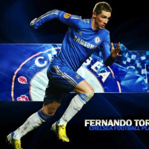 download Fernando Torress Android Mobile Professional Football Tips …