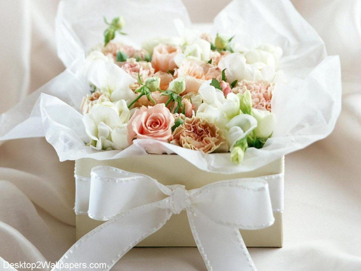 White rose wallpaper free flowers hd desktop wallpapers at – Buubi.Com