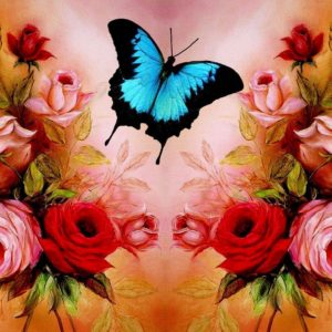 download Valentine's day Wallpaper-Butterfly Roses Wallpapers
