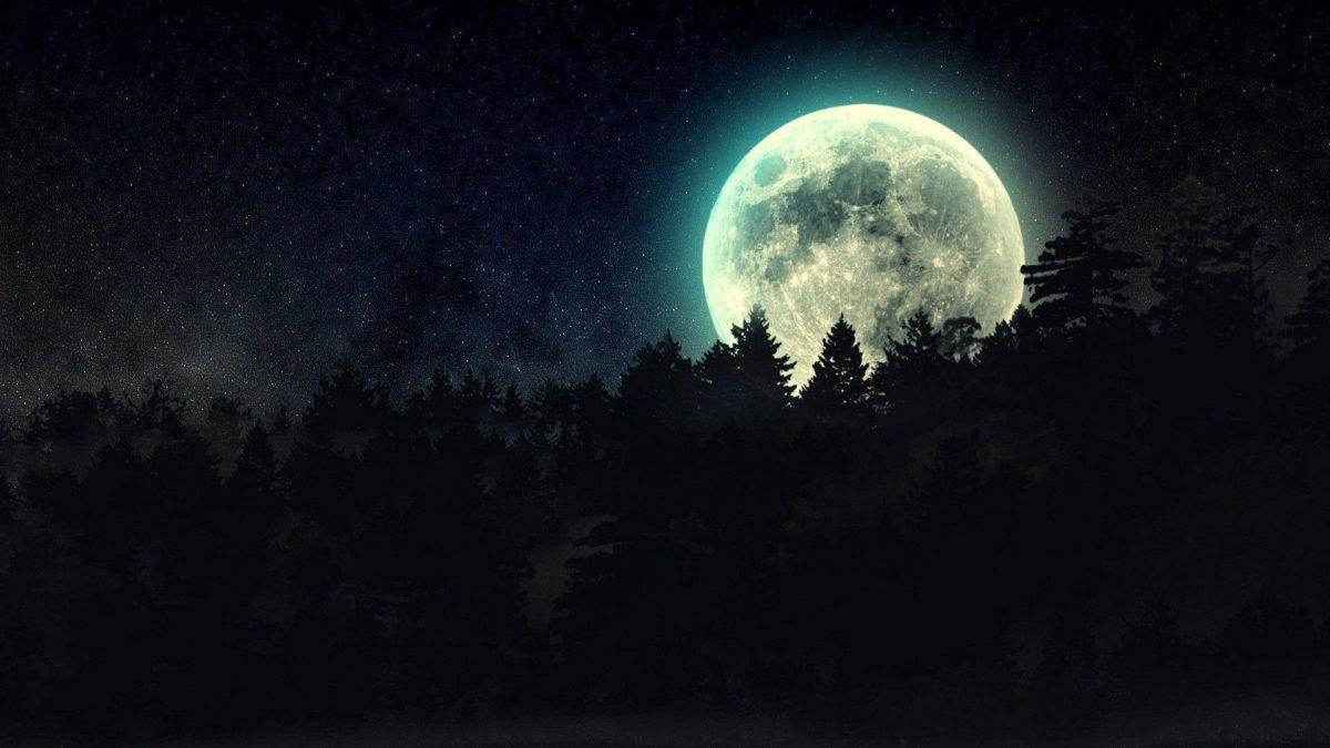 full moon beyond the pines wallpaper | Wallpaper