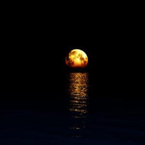 download Full Moon wallpaper by Vuenick on DeviantArt