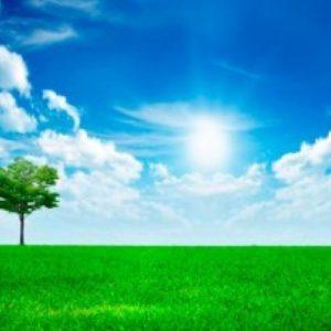 download Hd Nature Wallpaper For Desktop Full Size