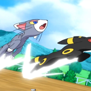 download Glameow and Umbreon fight together. | glameow | Pinterest | Pokémon