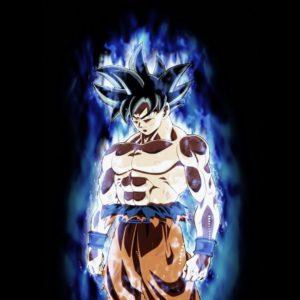 download Son Goku, #Dragon Ball, #Dragon Ball Super, #Ultra-Instinct Goku …