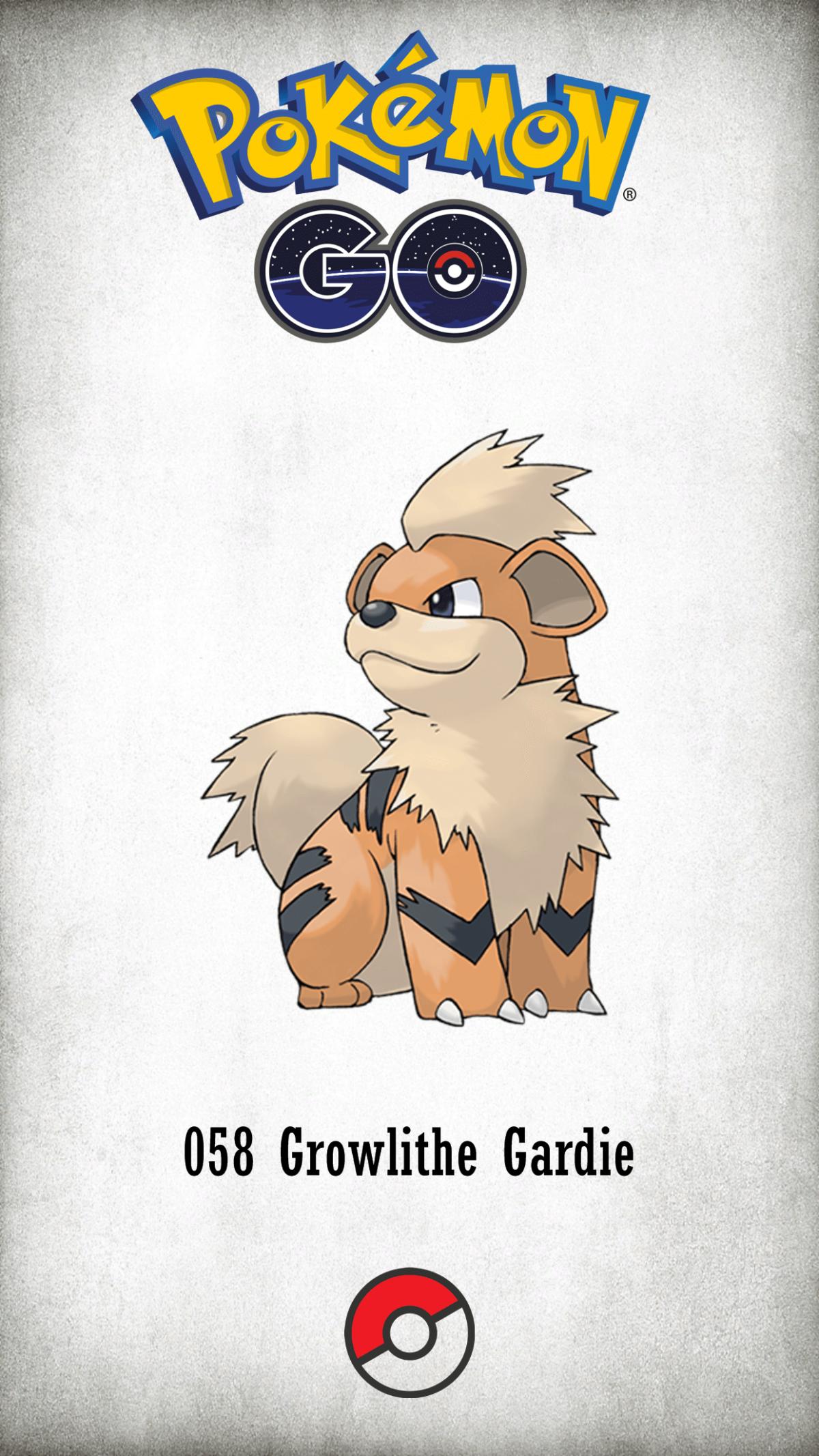 058 Character Growlithe Gardie | Wallpaper