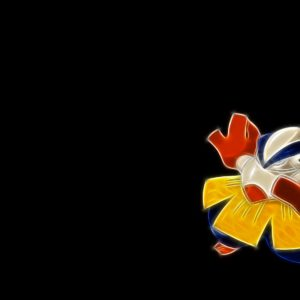 download 2 Hariyama (Pokémon) HD Wallpapers | Background Images – Wallpaper Abyss