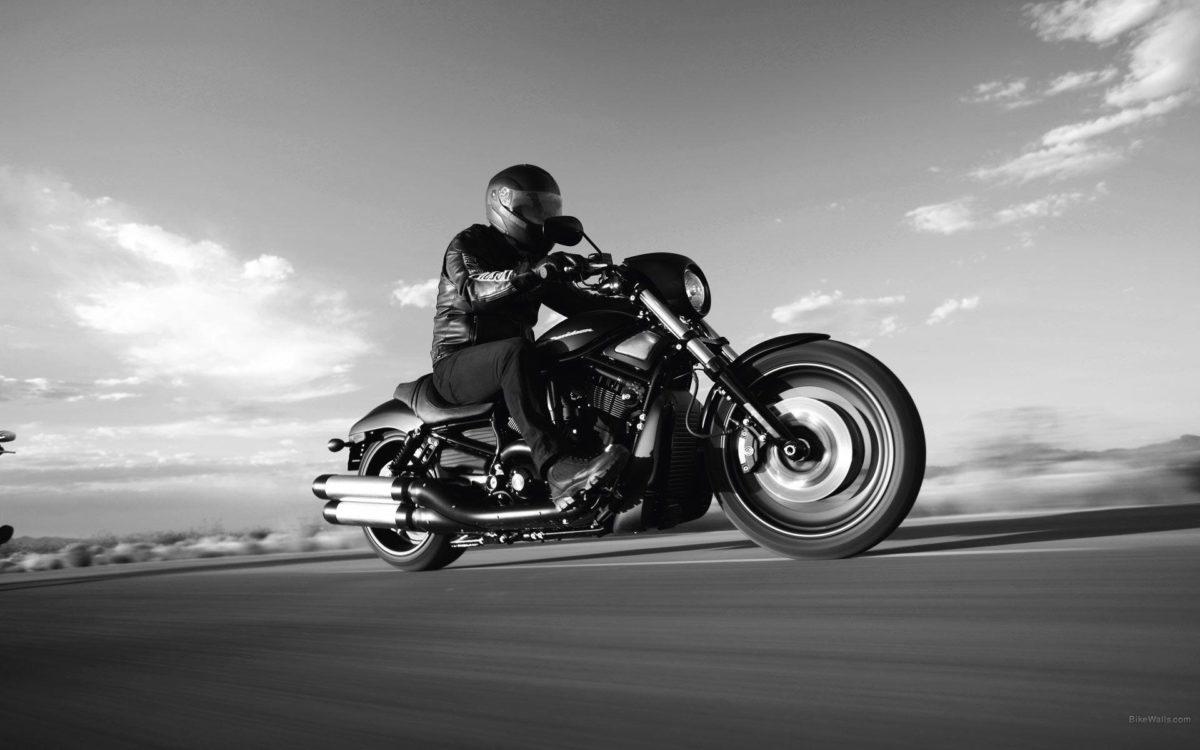 Harley Davidson Night Rod wallpaper – 981371