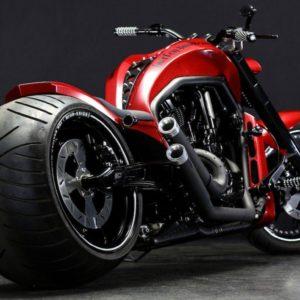 download Harley davidson Wallpaper HD – wallpapermonkey.com