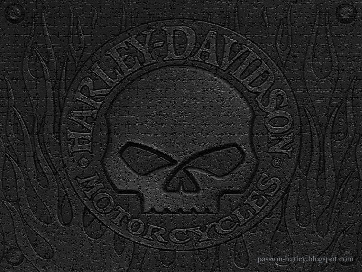 Harley Skull Wallpaper – WallpaperSafari