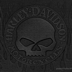 download Harley Skull Wallpaper – WallpaperSafari