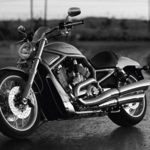 download Harley Davidson Wallpapers HD   PixelsTalk.Net