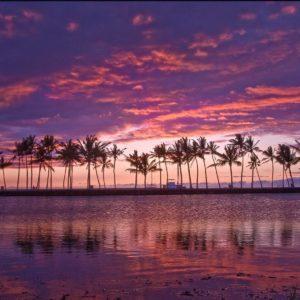 download Mirrors Hawaiian Pond Hawaii Wallpapers