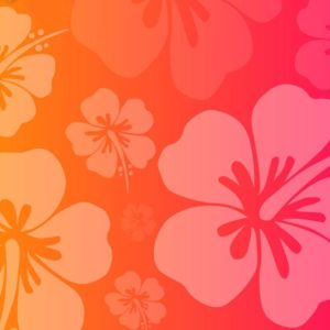 download Hawaiian Flower Wallpaper : Pink Hawaiian Flowers Background Utama …