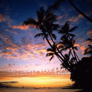 download Wallpapers For > Hawaiian Sunset Background