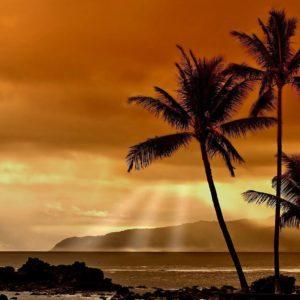 download Hawaii Sunset Wallpaper – WallpaperSafari