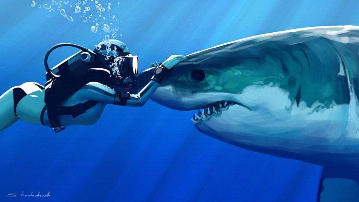Sharks-HD-Wallpaper-4 – Animals Planent.