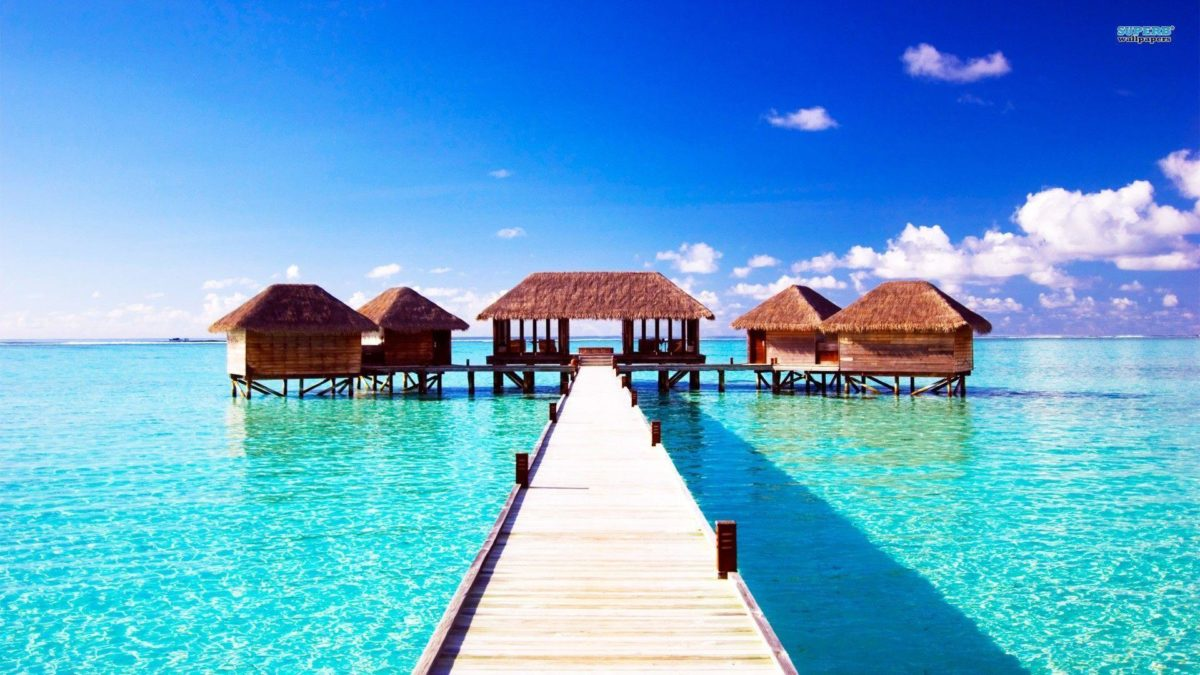 Summer Wallpaper 2014 Hd Hd Cool 7 HD Wallpapers | Hdimges.