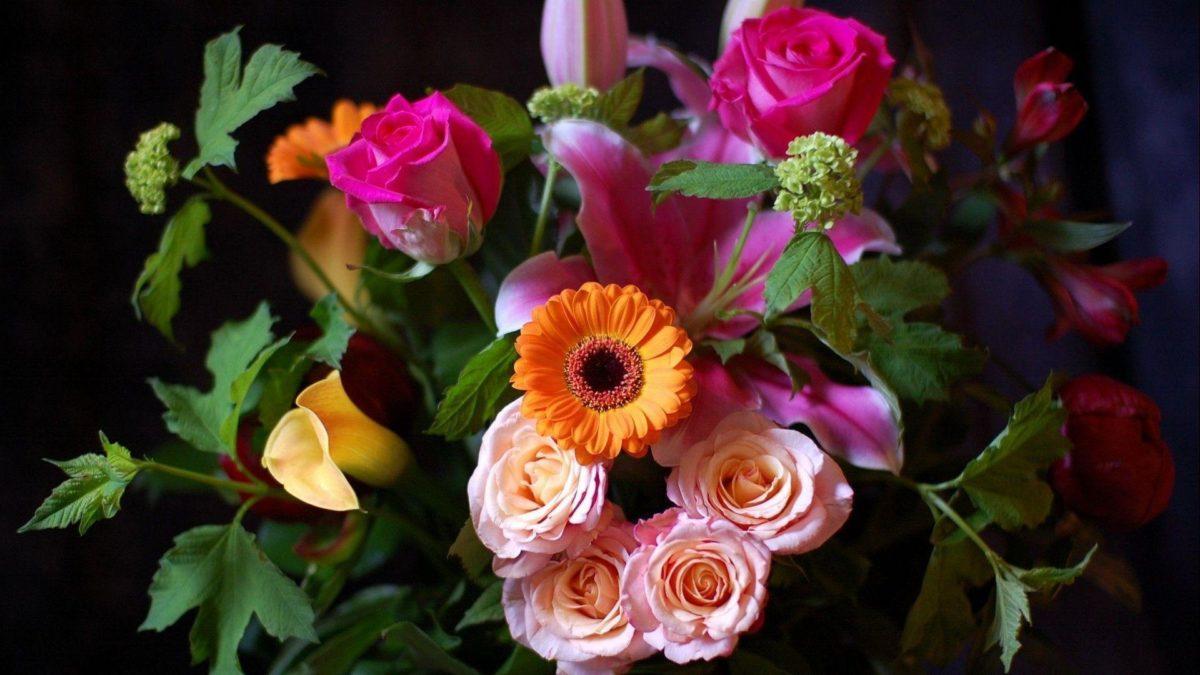 Full hd Wallpapers 1920×1080 Flowers (11) – Stepwallpaper.com …