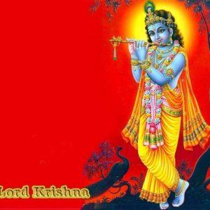 download Gopal Krishna | HINDU GOD WALLPAPERS FREE DOWNLOAD