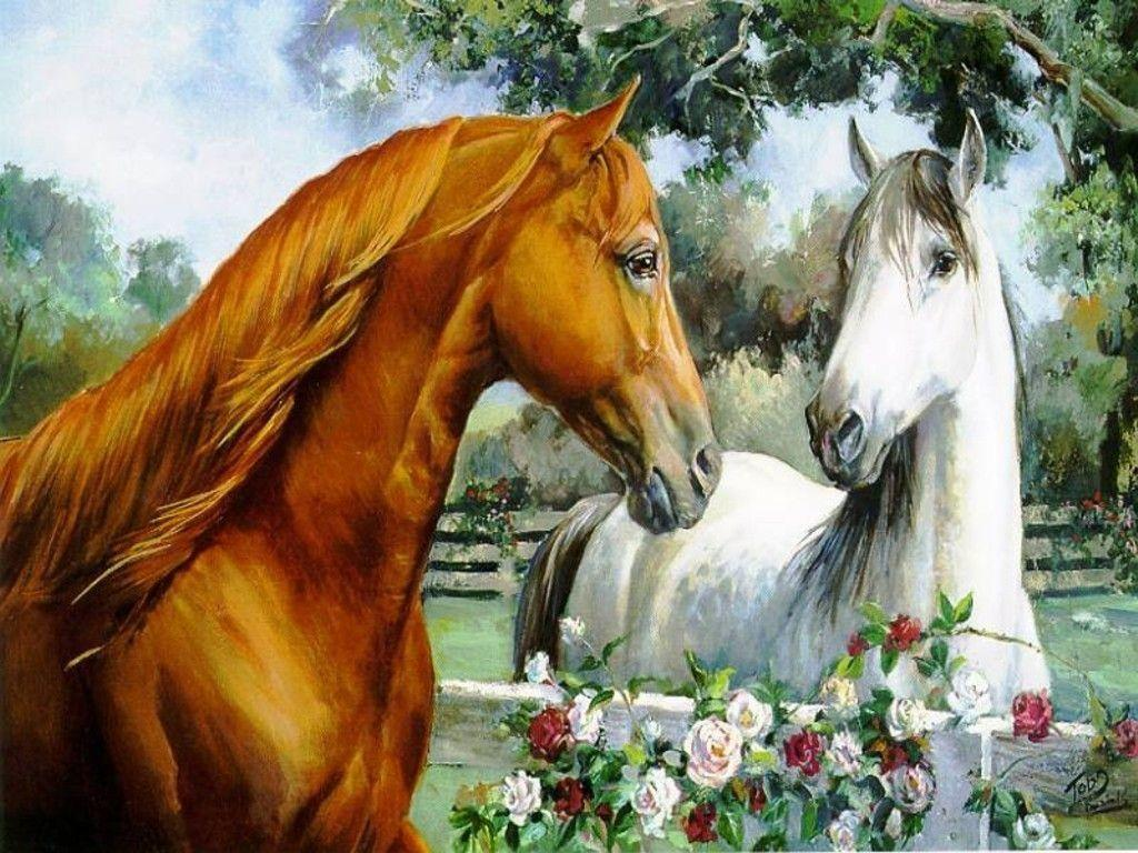 More horse wallpapers! – Horses Wallpaper (15705283) – Fanpop