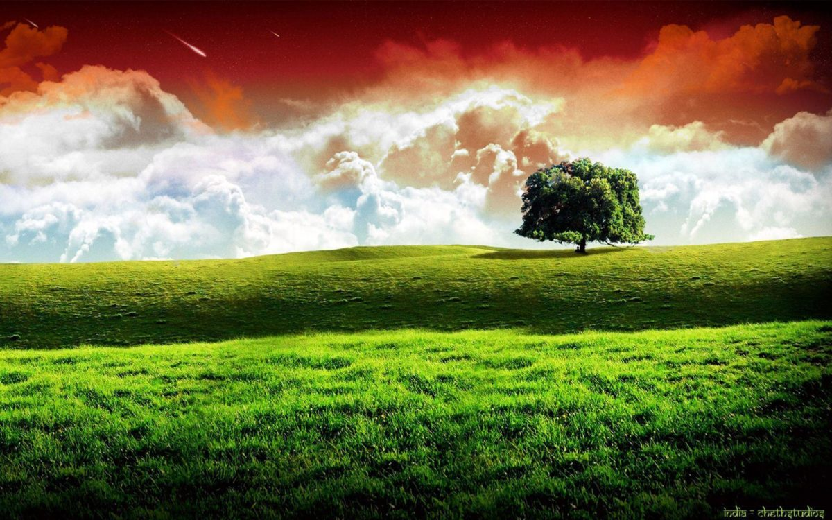 Indian Flag wallpaper – 211176