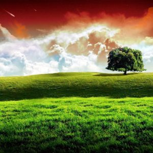 download Indian Flag wallpaper – 211176
