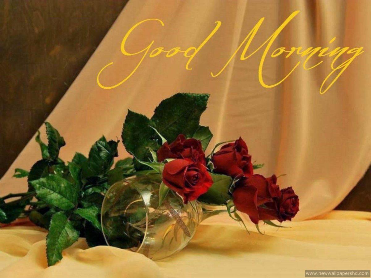 stylish Good Morning HD Wallpapers in English & Hindi | HD Walls