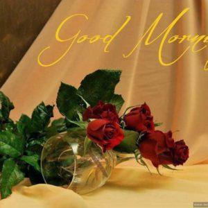 download stylish Good Morning HD Wallpapers in English & Hindi   HD Walls