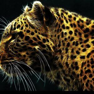 download Jaguar Wallpaper, PC 34 Jaguar Pictures, LL.GL Backgrounds Collection