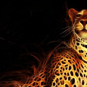 download Jaguar Animal Wallpaper