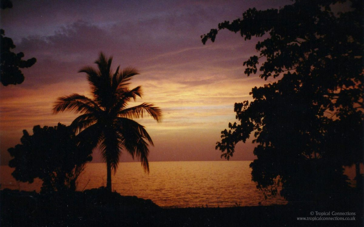 Free Wallpaper – Sunset in Jamaica – Tropical Connections