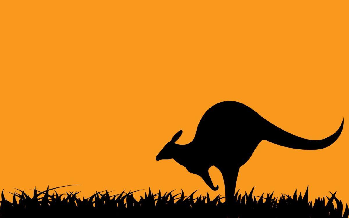 Art Kangaroo Wallpapers | Pictures