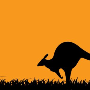 download Art Kangaroo Wallpapers | Pictures