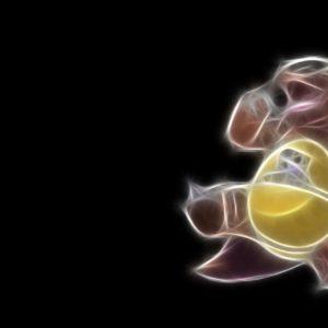 download Free 1920×1080 Pokemon Simple Black Kangaskhan Wallpapers Full HD …