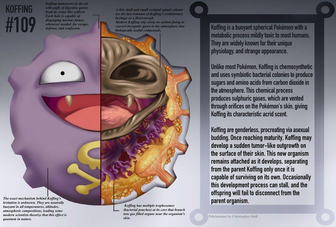 Koffing Anatomy- Pokedex Entry by Christopher-Stoll on DeviantArt