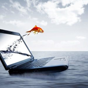 download Download Wallpapers Free For Laptop