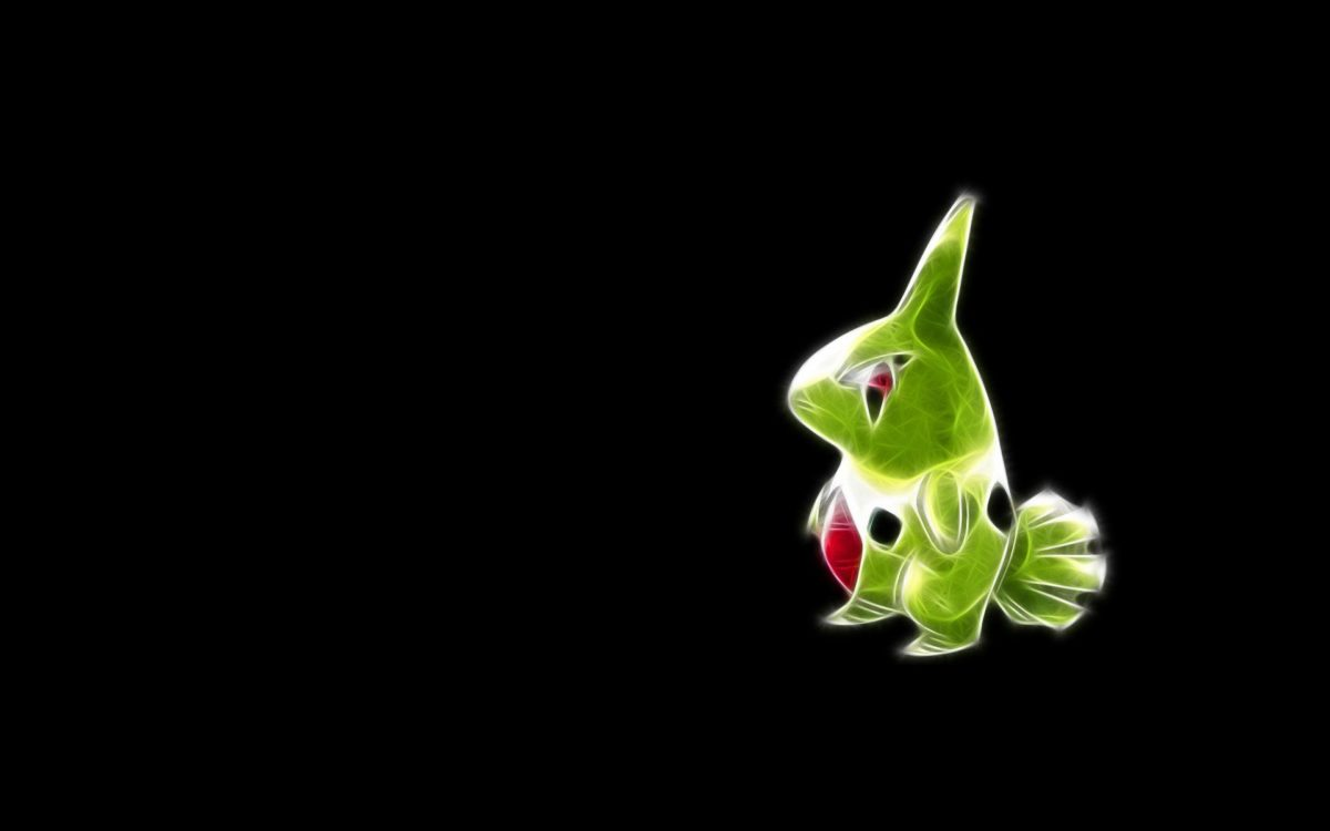 Pokémon Full HD Wallpaper and Background Image | 1920×1200 | ID:119569