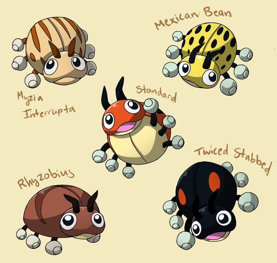 PokemonSubspecies: Ledyba by CoolPikachu29 on DeviantArt