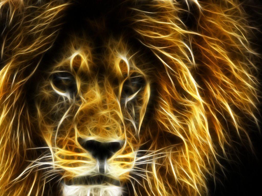 30 Undomesticated Lion Wallpapers – Pics Champ