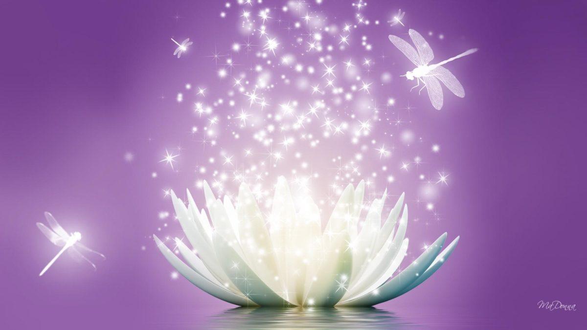 HD Lotus Flower Sparkle Wallpaper