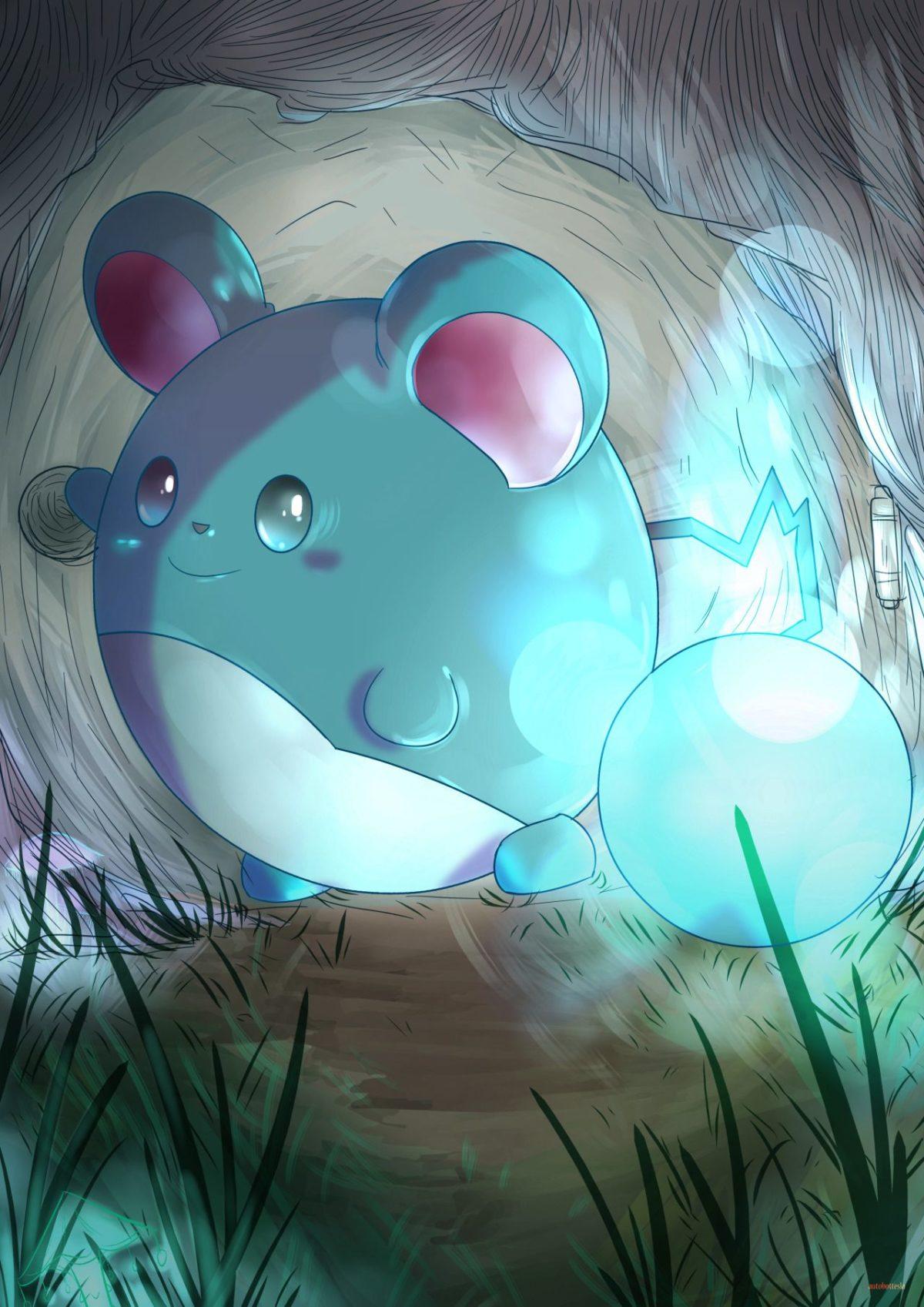 Marill | pokemon | Pinterest | Pokémon, Pokemon photo and Anime