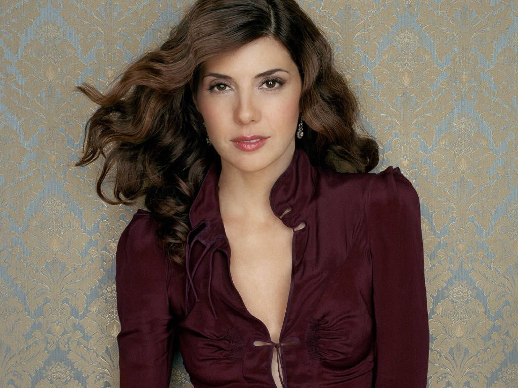 Marisa Tomei – Wallpaper Colection | Picture Space Cute