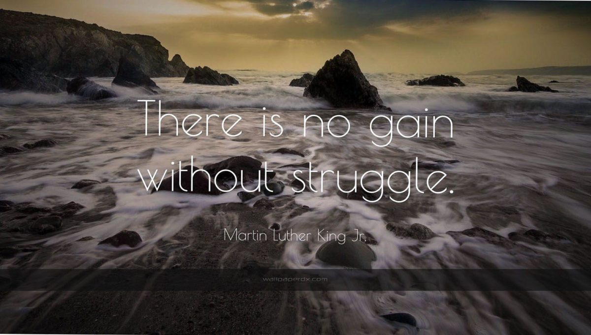 1174 martin luther king jr quote there is no gain without struggle …